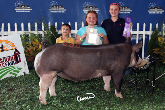 CHAMPION 4-H & OPEN BERK BARROW