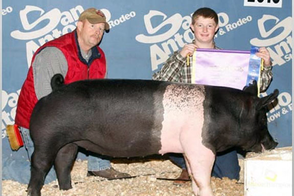 CHAMPION HAMP & RES CHAMPION GILT OVERALL
