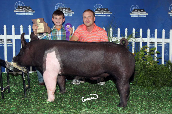 CHAMPION JUNIOR HAMPSHIRE BARROW