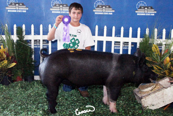 CHAMPION LIGHTWEIGHT CROSS BARROW