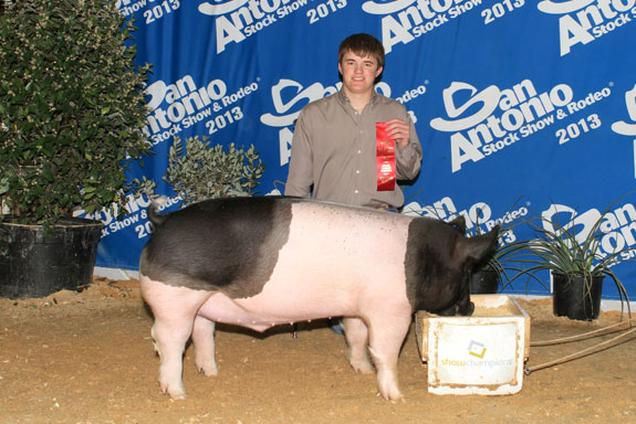 2ND PLACE CROSSBRED