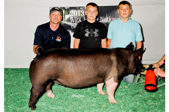 3RD OVERALL HAMPSHIRE GILT