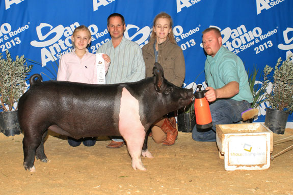 3RD PLACE DARK CROSSBRED