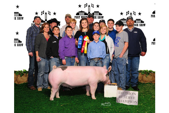 RESERVE CHAMPION CROSSBRED