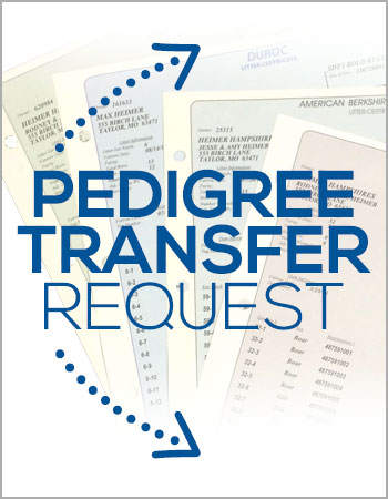 pedigreetransferrequest