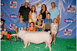 3rd Overall York Gilt at '17 WPX Junior National